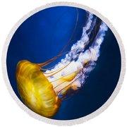 Majestic Jellyfish Round Beach Towel