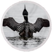 Majestic Loon Round Beach Towel