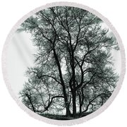 Round Beach Towel featuring the photograph Majesty by Lauren Radke