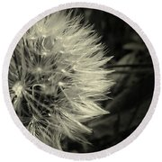 Round Beach Towel featuring the photograph Make A Wish by Clare Bevan