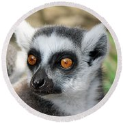 Round Beach Towel featuring the photograph Malagasy Lemur by Sergey Lukashin