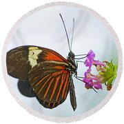 Round Beach Towel featuring the photograph Malay Lacewing by Nick  Boren