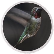Round Beach Towel featuring the photograph Male Anna Hummingbird In Flight by Jay Milo