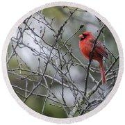 Male Northern Cardinal Round Beach Towel