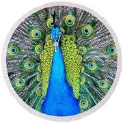 Male Peacock Round Beach Towel by Cynthia Guinn