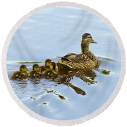 Mallard And Chicks  Round Beach Towel