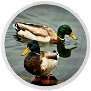 Mallards On Mendota Round Beach Towel