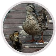 Mama Duck And Ducklings Round Beach Towel