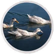 Round Beach Towel featuring the photograph Mama Duck Leads The Way by Susan Wiedmann