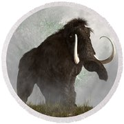 Mammoth In The Fog Round Beach Towel