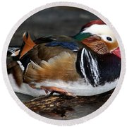 Mandarin Duck Round Beach Towel by Suzanne Stout