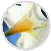 Round Beach Towel featuring the photograph Mandevilla by Greg Allore