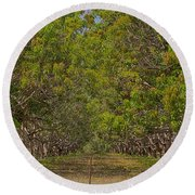 Mango Orchard Round Beach Towel by Douglas Barnard