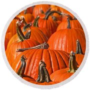 Many Pumpkins In A Row Art Prints Round Beach Towel by Valerie Garner