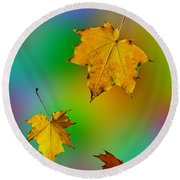 Soaring In The Air Maple Leaves. Round Beach Towel