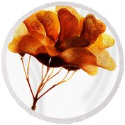 Maple Seed Pod Cluster Round Beach Towel