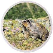 Marmot 2 Round Beach Towel