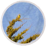 Meadowlark Serenade Round Beach Towel