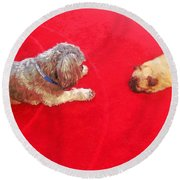 Dog And Puppy Pet Photography Lhasa Apso Shih Tzu Pomeranian   Round Beach Towel