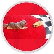Dog And Puppy Pet Photography Lhasa Apso Shih Tzu Pomeranian   Round Beach Towel