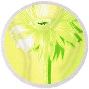 Melon Ball Zinnia Round Beach Towel by Sherry Allen
