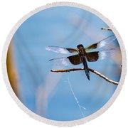 Merrill Creek Dragonfly Round Beach Towel