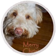 Merry Christmas From A Labrdoodle Card Round Beach Towel