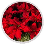Merry Scarlet Poinsettias Christmas Star Round Beach Towel