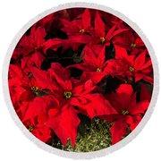 Merry Scarlet Poinsettias Christmas Star Round Beach Towel