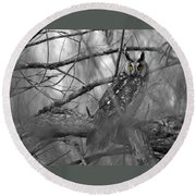 Round Beach Towel featuring the photograph Mesmerizing Eyes by James Peterson