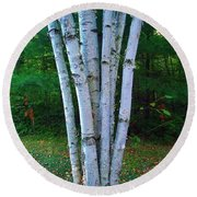 Round Beach Towel featuring the photograph Micro-grove by Daniel Thompson