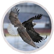 Round Beach Towel featuring the photograph Mid Air Fight by Coby Cooper
