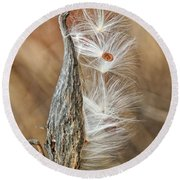 Round Beach Towel featuring the photograph Milkweed Pod And Seeds by William Selander