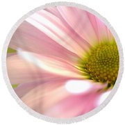 Miss Daisy Round Beach Towel by Deb Halloran