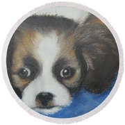 Round Beach Towel featuring the painting Mitzy by Jeanne Fischer