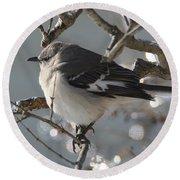 Mockingbird In Winter Round Beach Towel