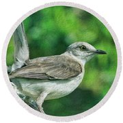 Mockingbird Pose Round Beach Towel by Deborah Benoit