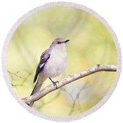Mockingbird Round Beach Towel by Scott Pellegrin