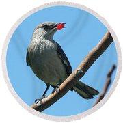 Mockingbird With Berries Round Beach Towel