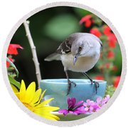 Mockingbird And Teacup Photo Round Beach Towel