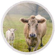 Momma And Baby Cow Round Beach Towel