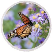 Monarch Butterfly 3 Round Beach Towel