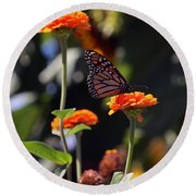 Monarch Butterfly And Orange Zinnias Round Beach Towel