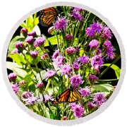 Monarch Butterfly Couple Round Beach Towel