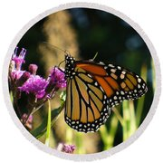 Round Beach Towel featuring the photograph Monarch Butterfly by Lingfai Leung