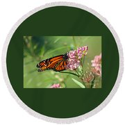 Monarch Butterfly On Milkweed Round Beach Towel