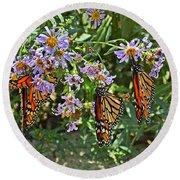 Monarch Butterfly Trio Round Beach Towel by Susan Wiedmann