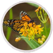 Round Beach Towel featuring the photograph Monarch by Jane Luxton