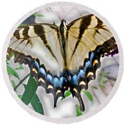 Monarch Majesty Round Beach Towel