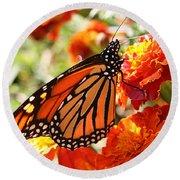 Monarch On Marigold Round Beach Towel